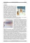 Blockseminar Informatik Themenschwerpunkt Softwaretest ... - Seite 5