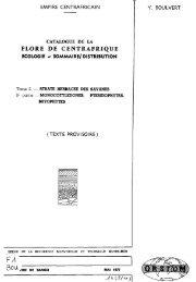 2 - Horizon documentation-IRD