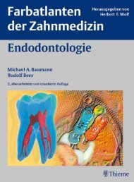 Endodontologie - PagePlace
