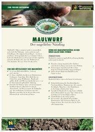MAULWURF - umweltberatung