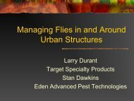 Controlling Flies in and Around Urban Structures