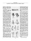 SAMPSON TOWGOOD ROCH, MINIATURIST - Page 4