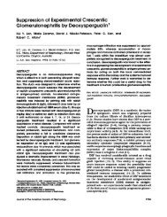 Suppression of Experimental Crescentic Glomerulonephritis by ...