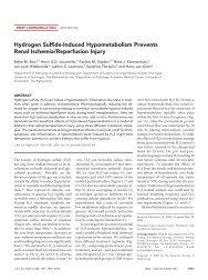 Hydrogen Sulfide-Induced Hypometabolism Prevents Renal ...