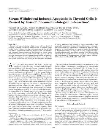 Serum Withdrawal-Induced Apoptosis in Thyroid Cells Is Caused by ...