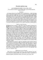 375 Amoeba taylorae n.sp. By CATHERINE HAYES, SND, B.Sc, PH.D.