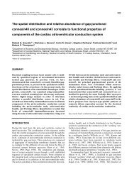 The spatial distribution and relative abundance of gap-junctional ...