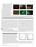 1414 - 1417.pdf - Page 2