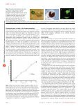 1414 - 1417.pdf - Page 3