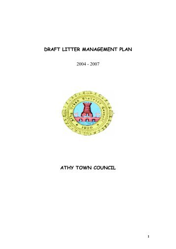 DRAFT LITTER MANAGEMENT PLAN 2004 - 2007 ... - Kildare.ie