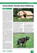 Tierschutz 2.2013 - Umschlag_1 - Tierschutz in Braunschweig - Seite 7