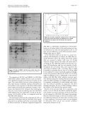 Analysis of proteome response to the mobile phone radiation in two ... - Page 7