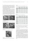 Die porcine Zona pellucida während Reifung, Befruchtung und ... - Seite 5