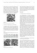 Die porcine Zona pellucida während Reifung, Befruchtung und ... - Seite 7