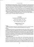 a new species of wallabia - Western Australian Museum - Page 2