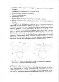 a new genus and two new species of leptodactylid frogs from ... - Page 5