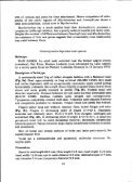 a new genus and two new species of leptodactylid frogs from ... - Page 6