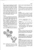 Adec Preview Generated PDF File - Western Australian Museum - Page 4