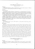 a new genus of mite (acari acaridae) phoretic on bees (ctenocolletes) - Page 3