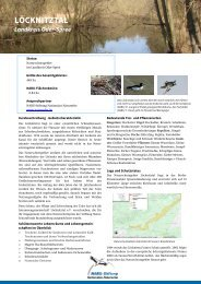 LÖCKNITZTAL - NABU-Stiftung Nationales Naturerbe
