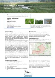 DOSSENIEDERUNG - NABU-Stiftung Nationales Naturerbe