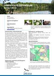 Torfstich Klosterfelde - NABU-Stiftung Nationales Naturerbe