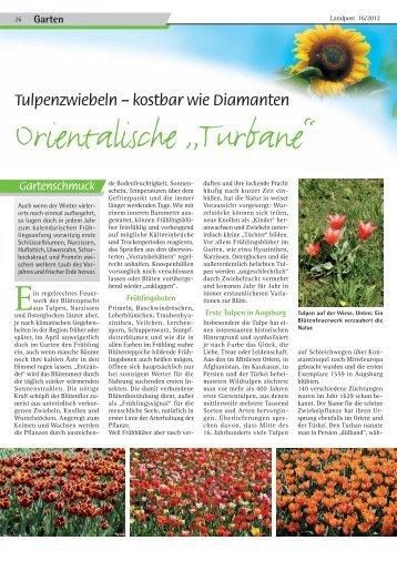 Orientalische Turbane.pdf - Dr. Neinhaus Verlag AG