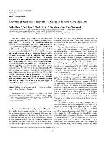 Enzymes of Jasmonate Biosynthesis Occur in Tomato Sieve Elements