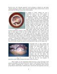 Nasca Ceramic Iconography: An Overview - Page 6