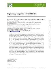 PoS(Integral08)056 - SISSA