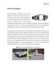 Ren By-kampagnen