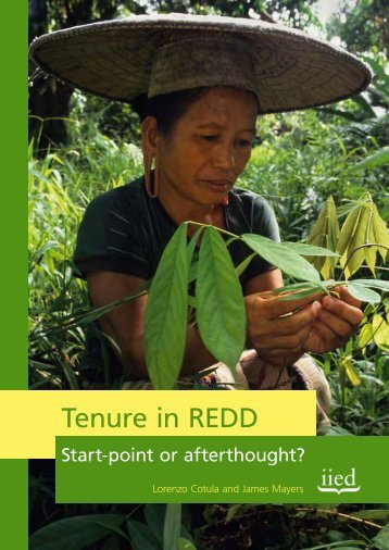 Tenure in REDD – Start-point or afterthought? - iied.org ...