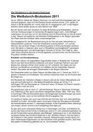 Weißstorch Brutsaison 2011 - BUND Kreisgruppe Region Hannover