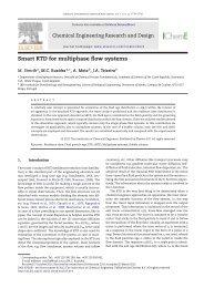 Smart RTD for multiphase flow systems - Universidade do Minho