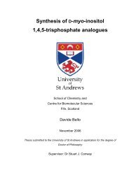Davide Bello - PhD Thesis.pdf - University of St Andrews