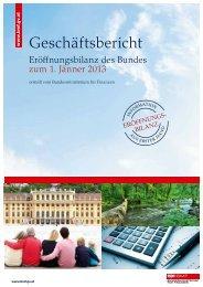 Geschäftsbericht Eröffnungsbilanz des Bundes zum 1. Jänner 2013