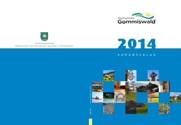 Voranschlag 2014 [PDF, 6.00 MB] - Gemeinde Gommiswald