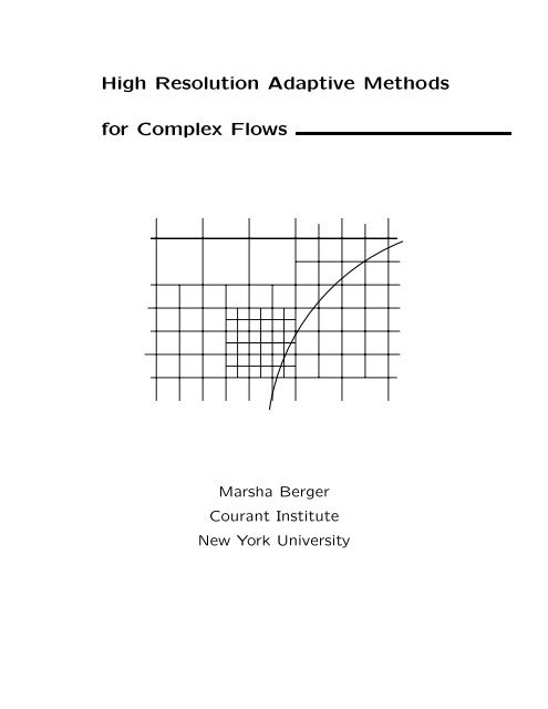 High Resolution Adaptive Methods for Complex Flows
