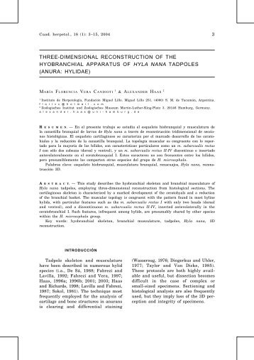 three-dimensional reconstruction of the hyobranchial ... - SeDiCI