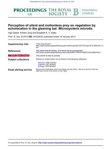 Micronycteris microtis echolocation in the gleaning bat Perception of ...