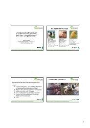 Hygienemaßnahmen bei den Liegeflächen - Landwirtschaft in ...