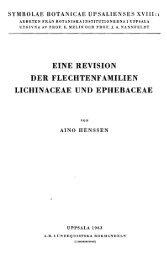 eine revision der flechtenfamilien lichinaceae und ephebaceae
