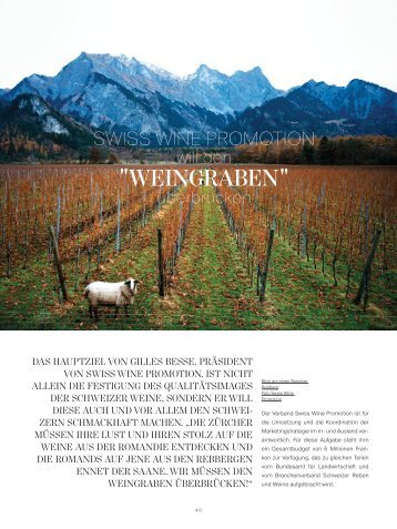Der Wandel auf dem Schweizer Weinmarkt - Stefan Keller