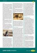 Reiseführer Namibia - Sunny Cars GmbH - Seite 6