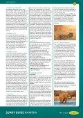 Reiseführer Namibia - Sunny Cars GmbH - Seite 7