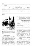 PDF - KoreaMed Synapse - Page 4