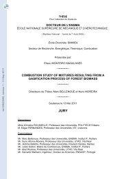 Etude de la combustion de gaz de synthèse issus d'un processus de ...