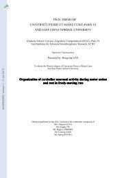 [tel-00829306, v1] Organisation de l'activité neuronale cérébelleuse ...