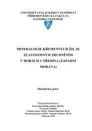 mineralogie kemenných žil se zlatonosným zrudnním v ... - Theses
