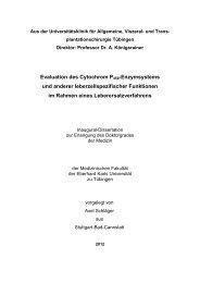 PDF 1.341kB - TOBIAS-lib - Universität Tübingen